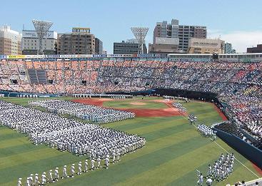 高校 野球 神奈川